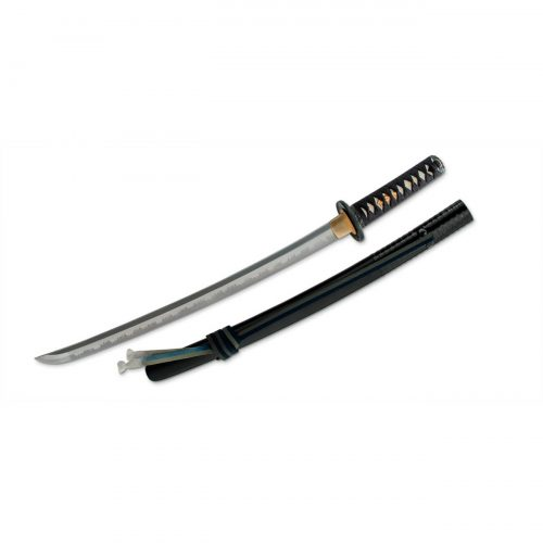 Hanwei (Paul Chen) Lion Dog Wakizashi SH2449